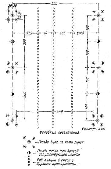 Схема размещения в одной ленте